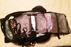 A glimpse inside my Tortuga Backpack